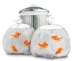Happy Goldfish Garbage Sacks