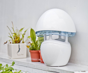 INADAYS InaTrap Electronic Insect Killer and Elegant Night Light