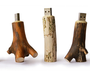 Oooms Wooden USB Flash Drive