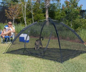 Outdoor equipment for Cats