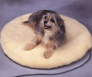 Large Heated Pet Bed
