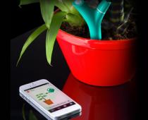 Parrot Flower Power - The Most Advanced Plant Sensor
