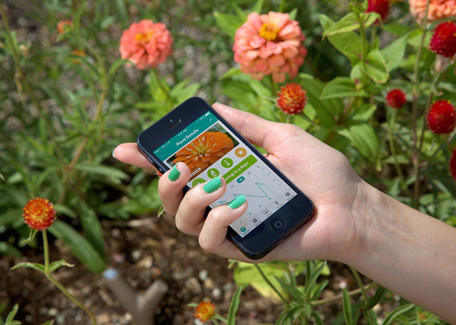 Parrot Flower Sensor