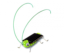 Solar Powered Bug