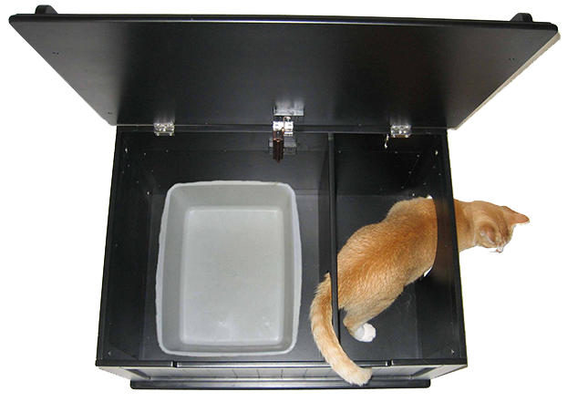 Designer Catbox-The Ultimate Cat Toilet