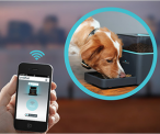 Pintofeed Remote Pet Feeder
