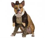 Indiana Jones Dog Costume on Amazon
