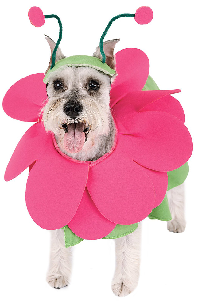 Blooming Snout Pet Costume