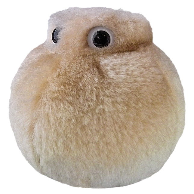 Giant Plush Toy Fat Cell