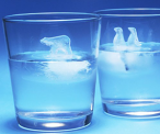 Penguin and Bear Ice Molds