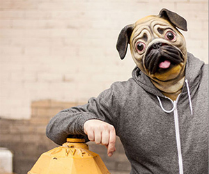 Real Looking Pug Mask