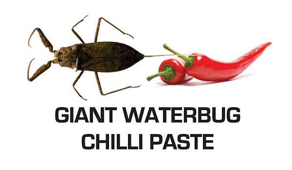 Giant Waterbug Chilli Paste