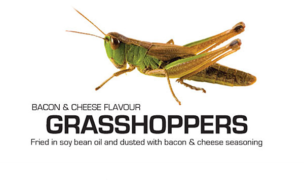 Grasshoppers with bacon and cheese flavor