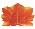 Maple Leaf Autumn Placemats