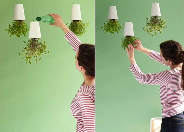 Boskke Hanging Air Planter