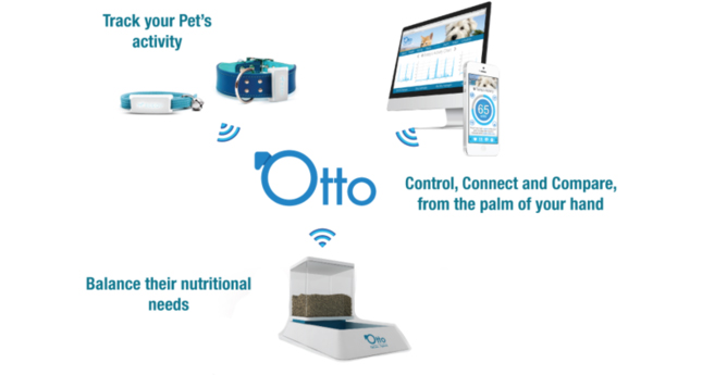 Otto Petcare System for cats and dogs