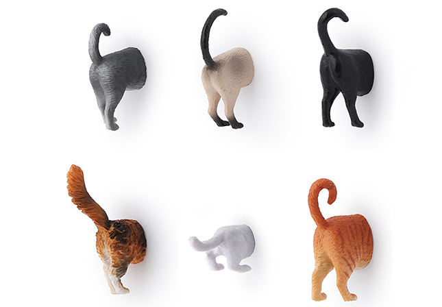 Cat butt magnets for refrigerator - all variantions